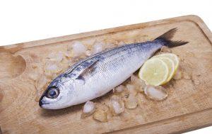 fisch-essen-istrien